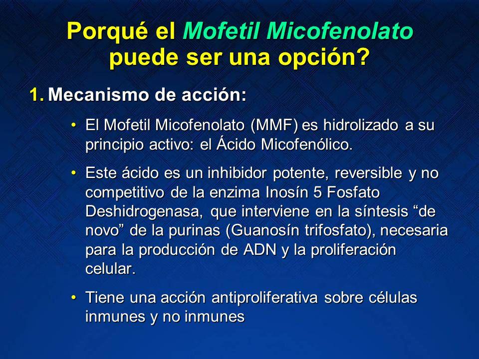 Porqué el Mofetil Micofenolato puede ser una opción