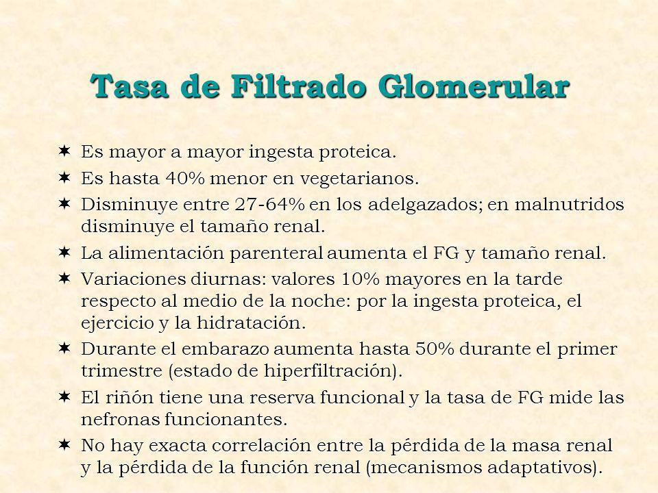Tasa de Filtrado Glomerular