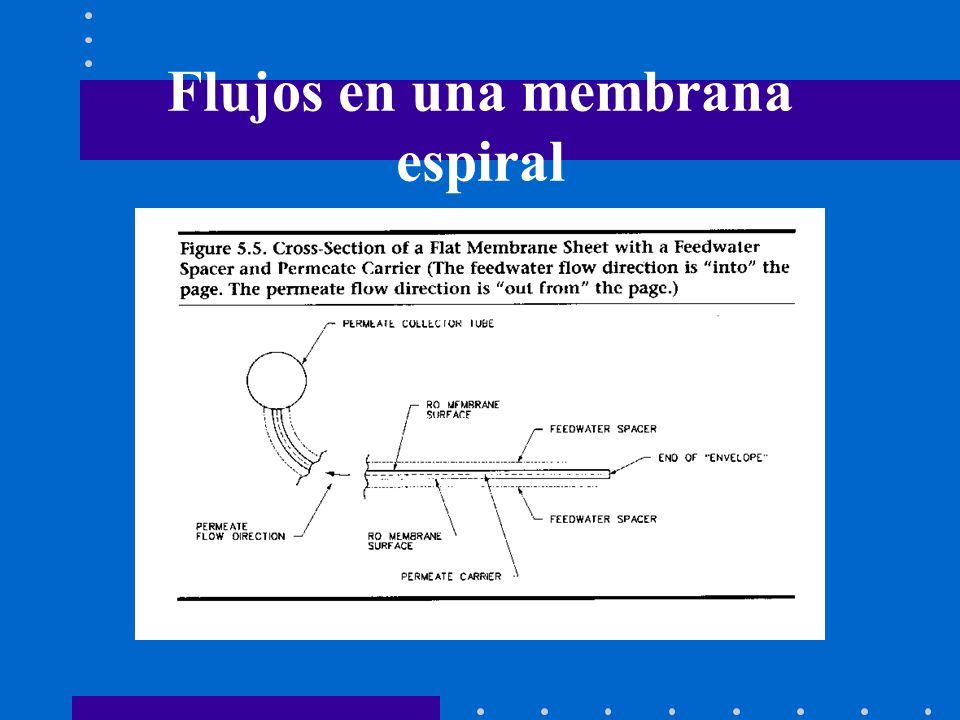Flujos en una membrana espiral