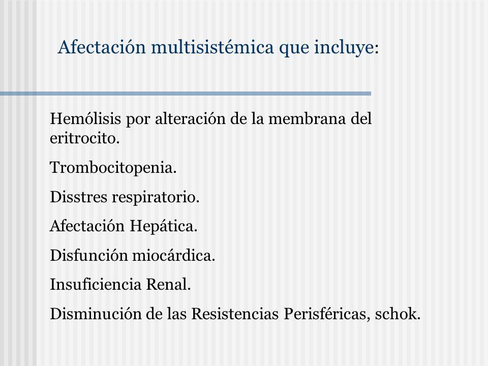 Afectación multisistémica que incluye: