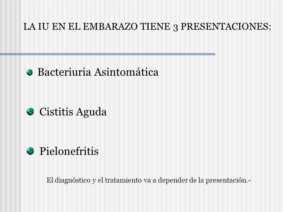 Cistitis Aguda Pielonefritis