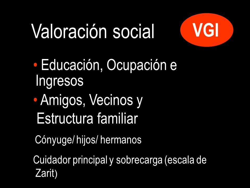 Valoración social VGI Educación, Ocupación e Ingresos