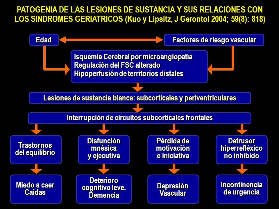 PATOGENIA DE LAS LESIONES DE SUSTANCIA Y SUS RELACIONES CON