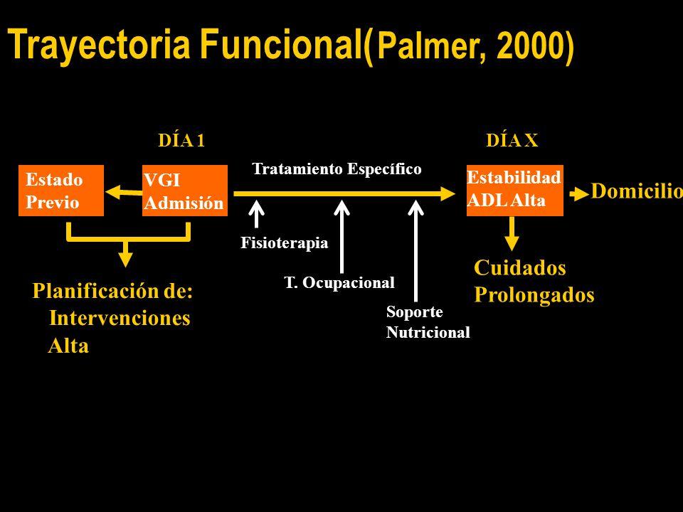 Trayectoria Funcional( Palmer, 2000)