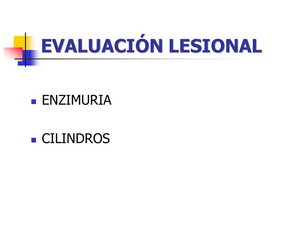 EVALUACIÓN LESIONAL ENZIMURIA CILINDROS