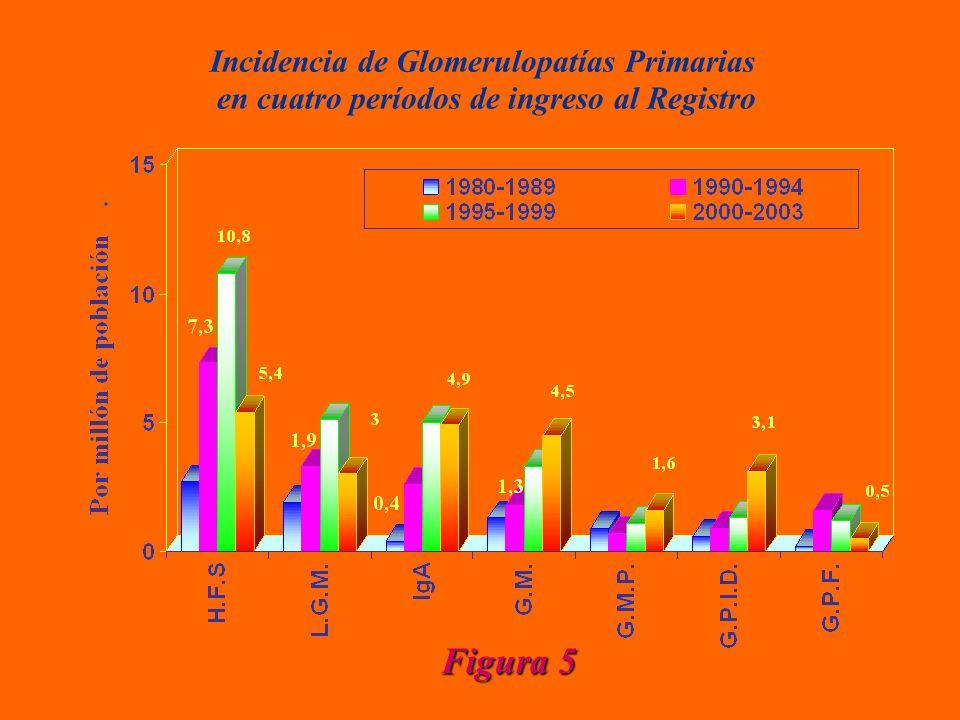 Incidencia de Glomerulopatías Primarias en cuatro períodos de ingreso al Registro