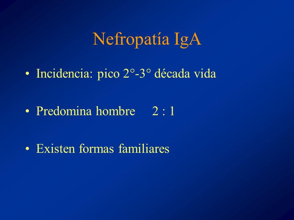 Nefropatía IgA Incidencia: pico 2°-3° década vida