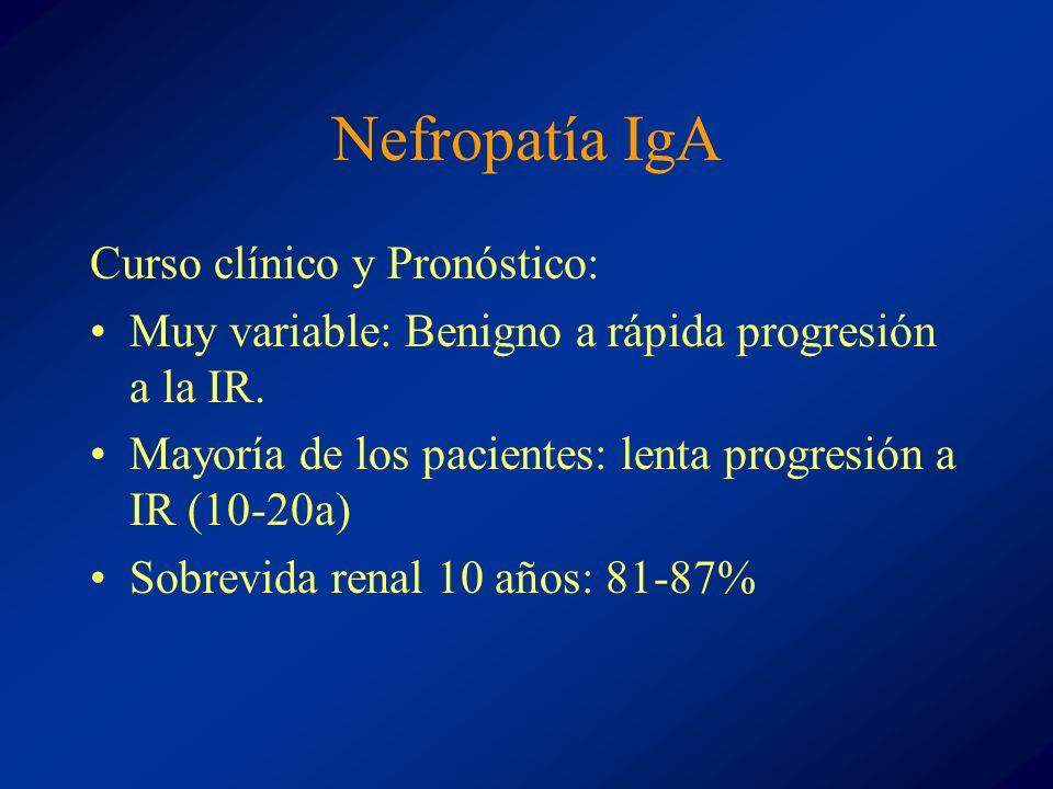 Nefropatía IgA Curso clínico y Pronóstico: