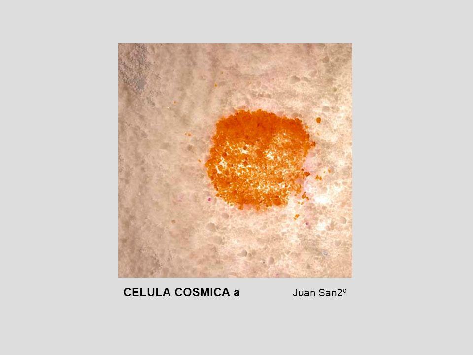 CELULA COSMICA a Juan San2º