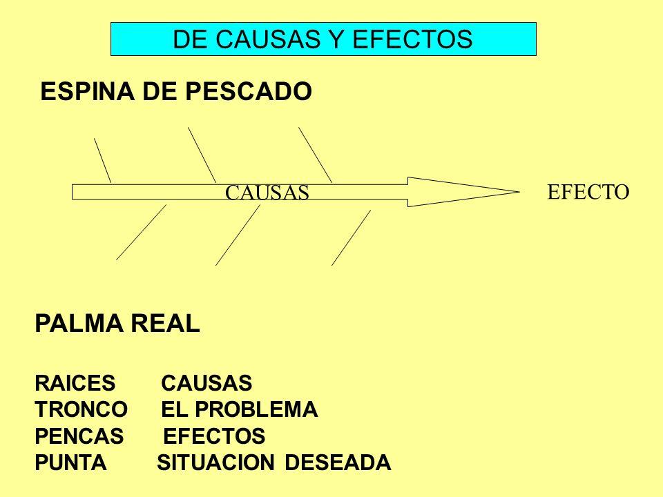 DE CAUSAS Y EFECTOS ESPINA DE PESCADO PALMA REAL CAUSAS EFECTO