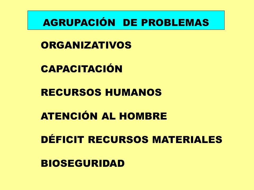 AGRUPACIÓN DE PROBLEMAS