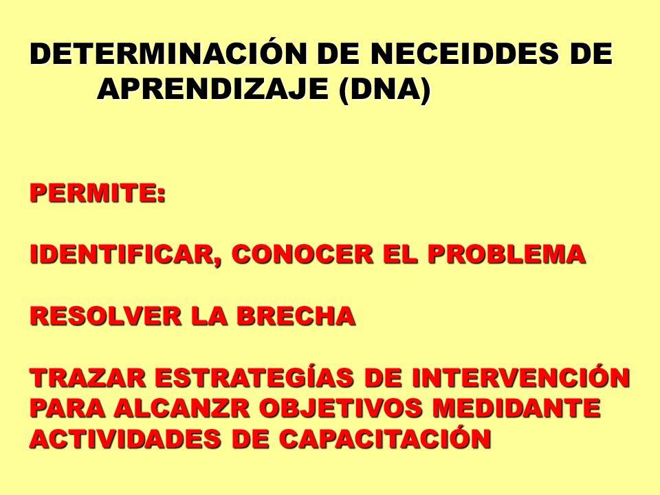 DETERMINACIÓN DE NECEIDDES DE APRENDIZAJE (DNA)