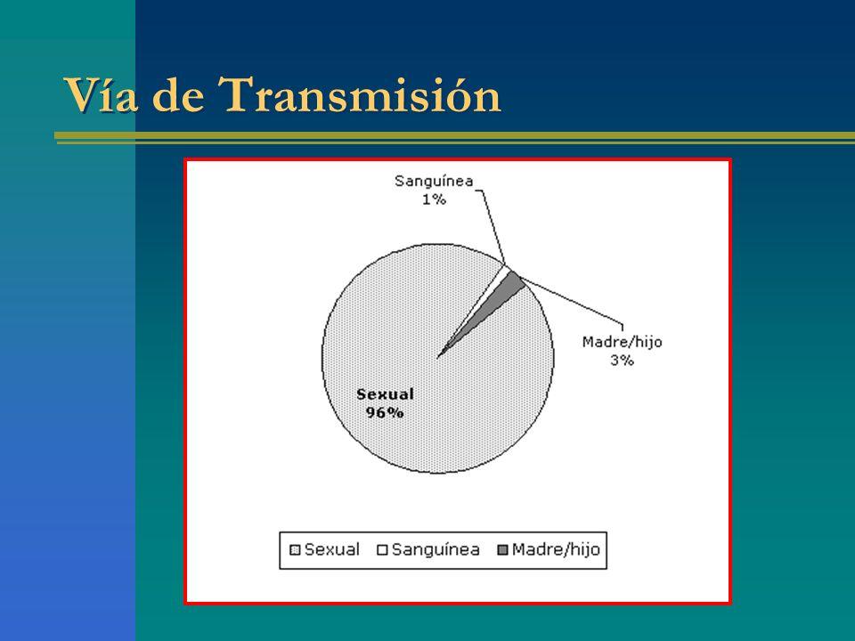 Vía de Transmisión