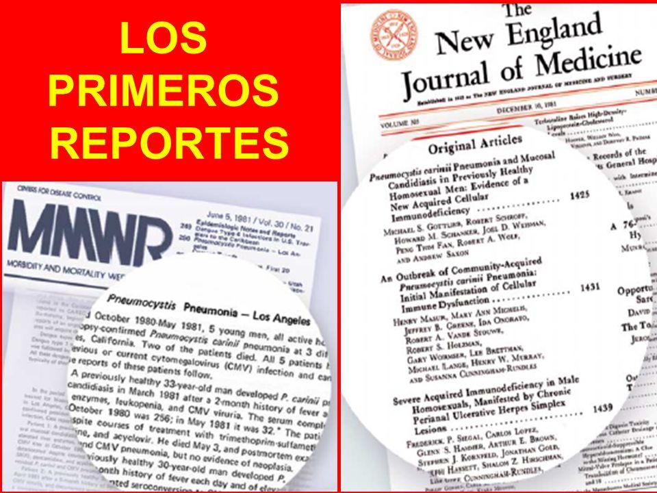 LOS PRIMEROS REPORTES