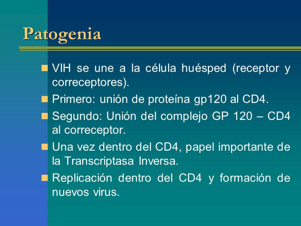 Patogenia VIH se une a la célula huésped (receptor y correceptores).