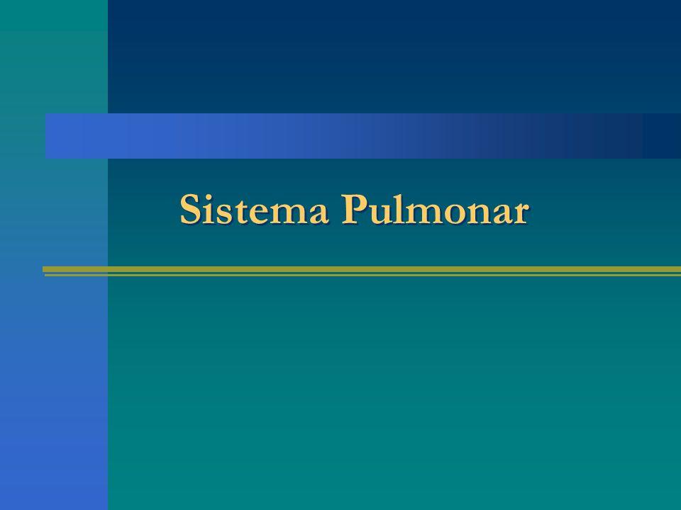 Sistema Pulmonar