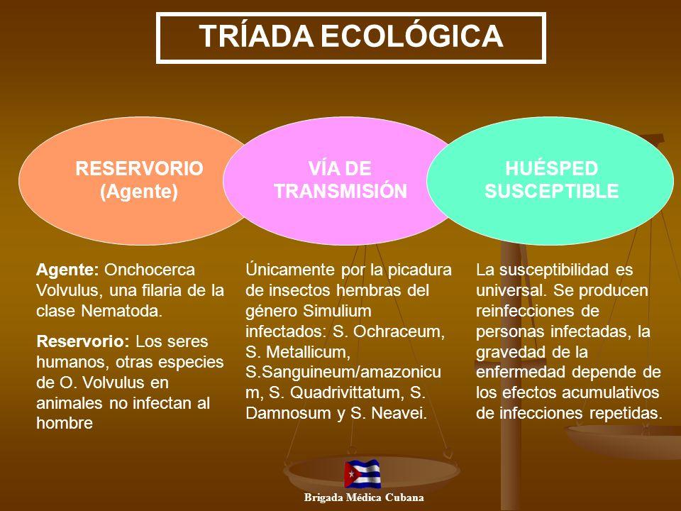TRÍADA ECOLÓGICA RESERVORIO (Agente) VÍA DE TRANSMISIÓN