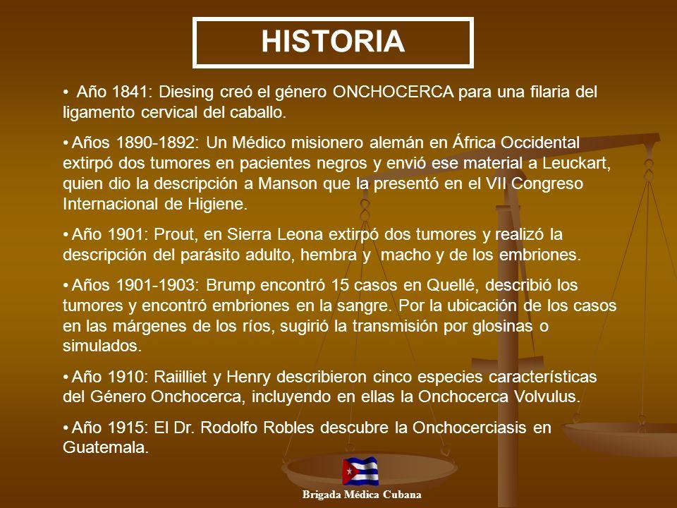 HISTORIA Año 1841: Diesing creó el género ONCHOCERCA para una filaria del ligamento cervical del caballo.