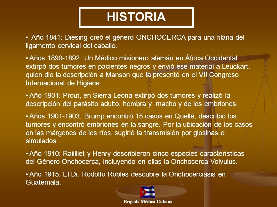 HISTORIAAño 1841: Diesing creó el género ONCHOCERCA para una filaria del ligamento cervical del caballo.
