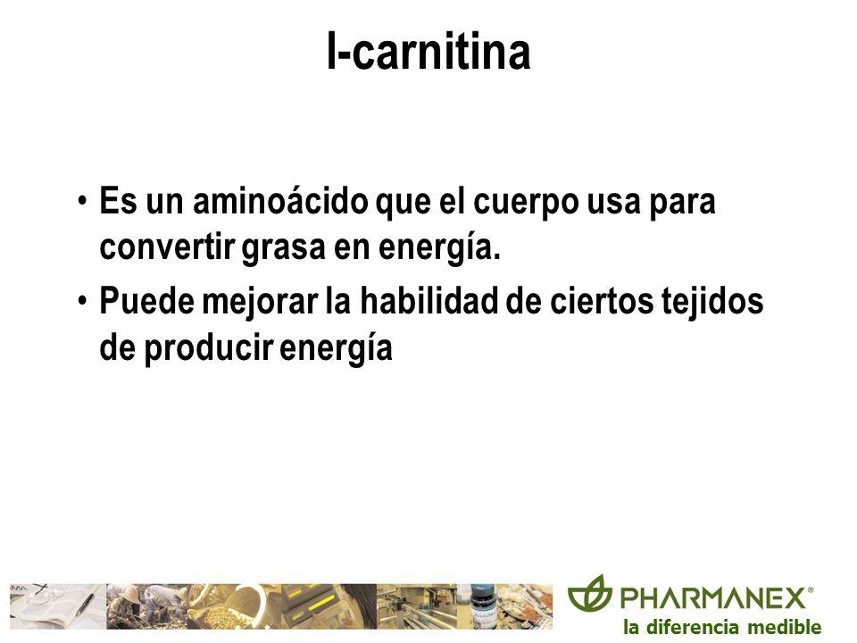 l-carnitina Es un aminoácido que el cuerpo usa para convertir grasa en energía.
