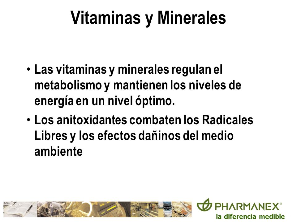 Vitaminas y MineralesLas vitaminas y minerales regulan el metabolismo y mantienen los niveles de energía en un nivel óptimo.