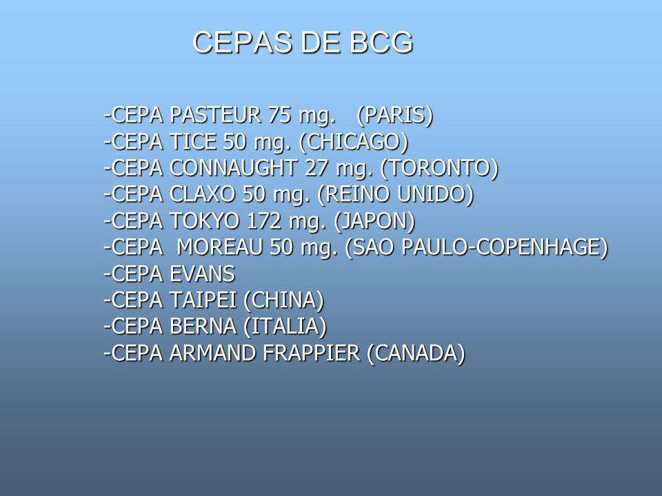 CEPAS DE BCG -CEPA PASTEUR 75 mg. (PARIS) -CEPA TICE 50 mg. (CHICAGO)