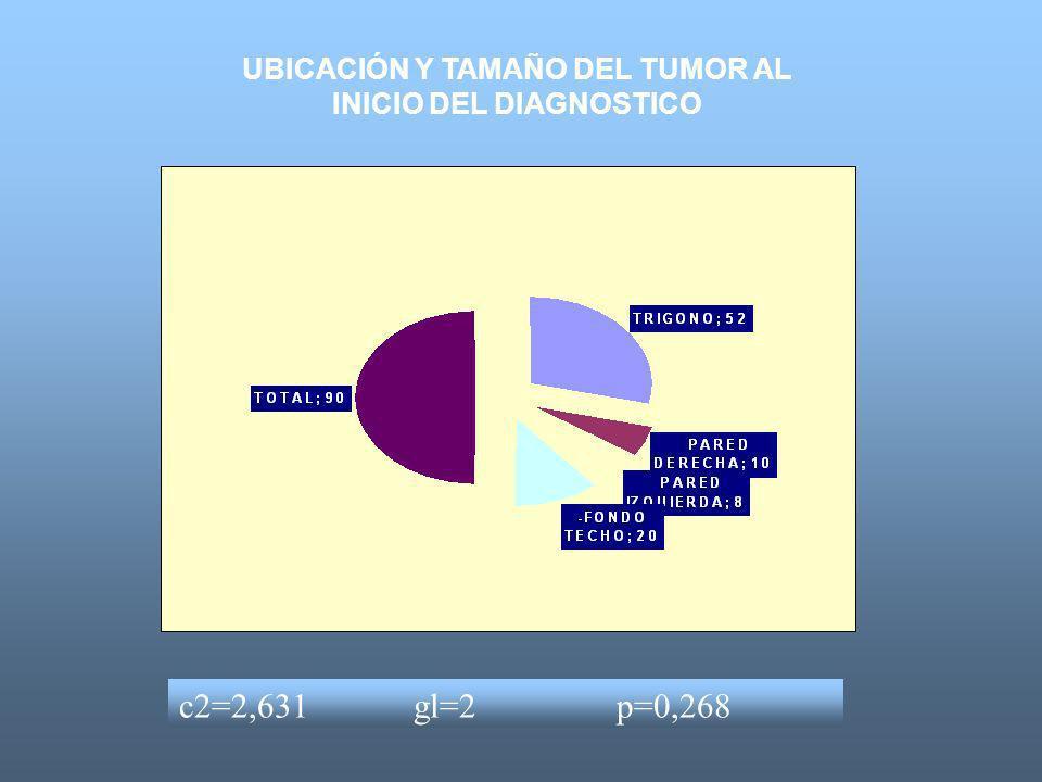 UBICACIÓN Y TAMAÑO DEL TUMOR AL INICIO DEL DIAGNOSTICO