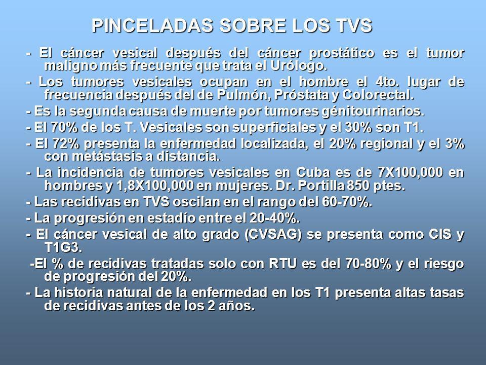PINCELADAS SOBRE LOS TVS