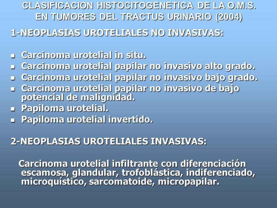 CLASIFICACION HISTOCITOGENETICA DE LA O. M. S