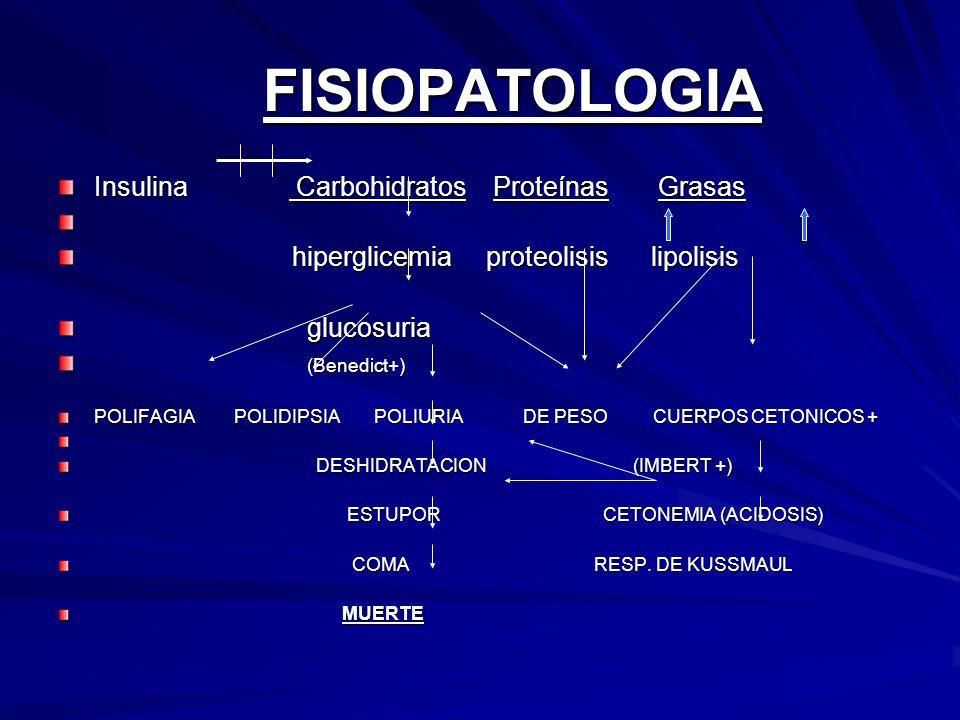 FISIOPATOLOGIA Insulina Carbohidratos Proteínas Grasas