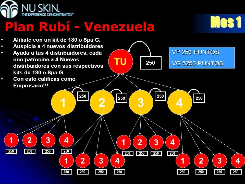 Mes 1 Plan Rubí - Venezuela 1 2 3 4 TU 1 2 3 4 1 2 3 4 1 2 3 4 1 2 3 4