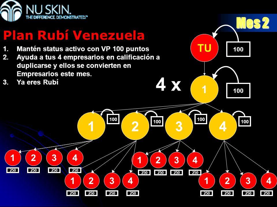4 x Mes 2 1 2 3 4 Plan Rubí Venezuela TU 1 2 3 4 1 2 3 4 1 2 3 4 1 2 3
