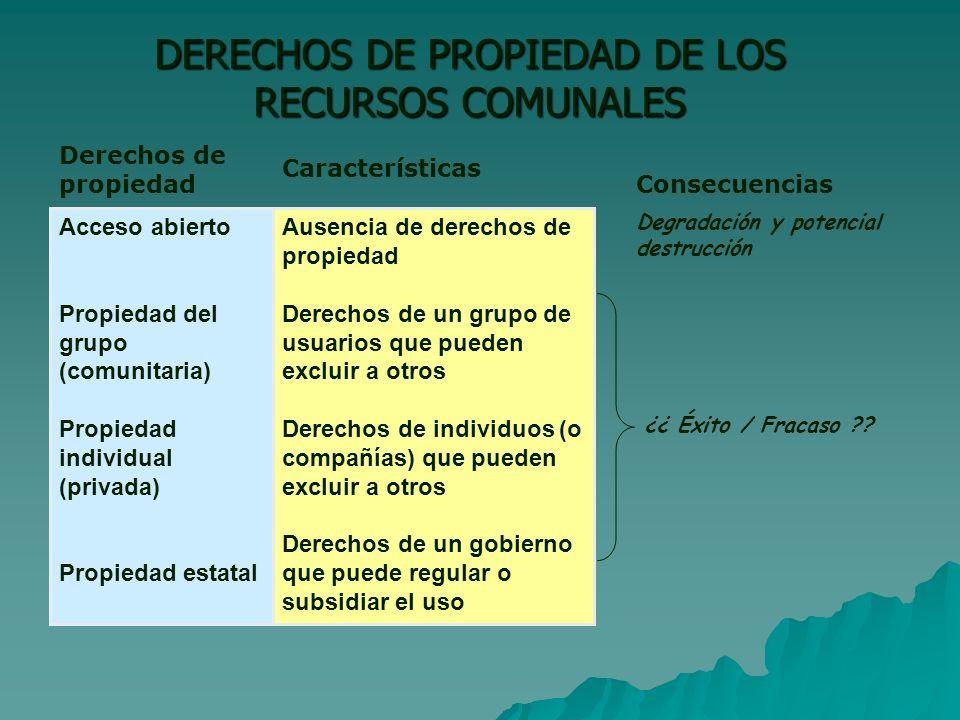 DERECHOS DE PROPIEDAD DE LOS RECURSOS COMUNALES
