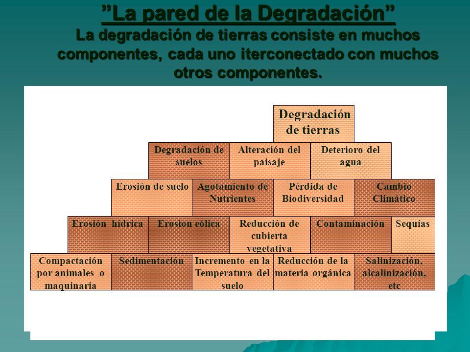 La pared de la Degradación La degradación de tierras consiste en muchos componentes, cada uno iterconectado con muchos otros componentes.