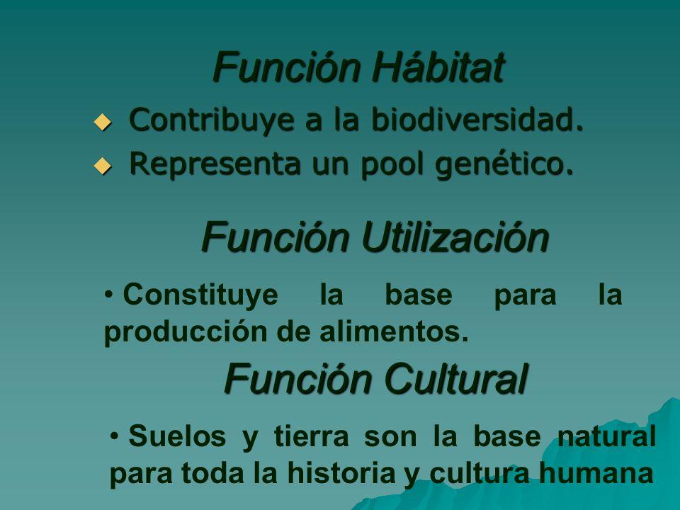 Función Hábitat Función Utilización Función Cultural
