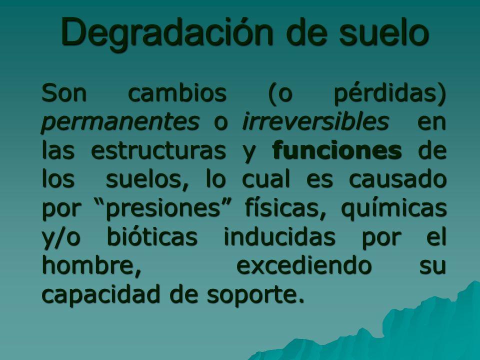Degradación de suelo