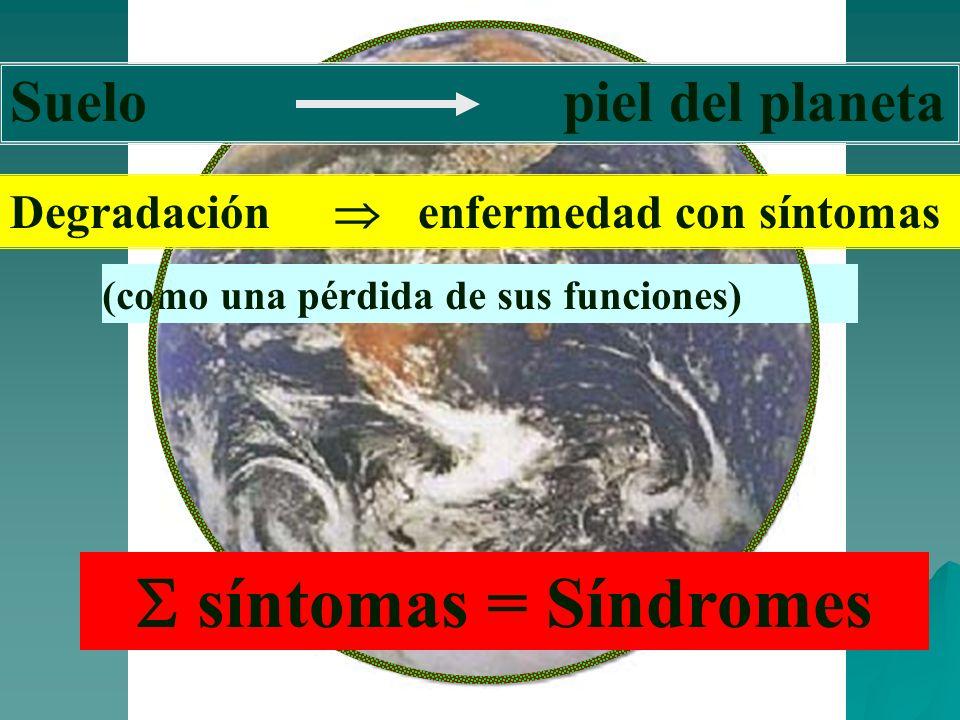S síntomas = Síndromes Suelo piel del planeta