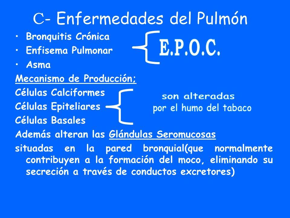 C- Enfermedades del Pulmón