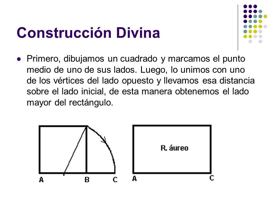 Construcción Divina