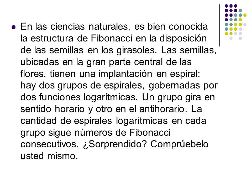 En las ciencias naturales, es bien conocida la estructura de Fibonacci en la disposición de las semillas en los girasoles.