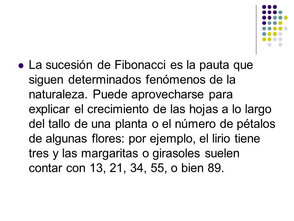 La sucesión de Fibonacci es la pauta que siguen determinados fenómenos de la naturaleza.