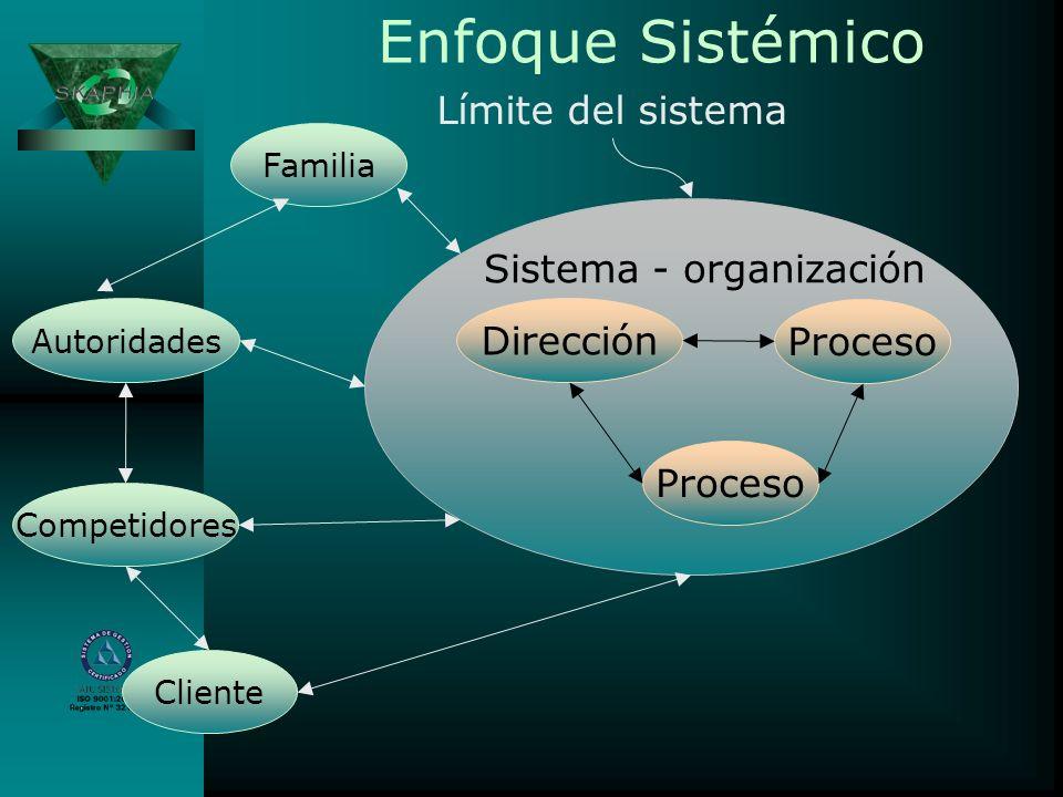 Sistema - organización