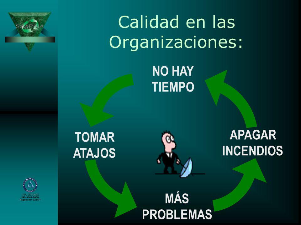Calidad en las Organizaciones: