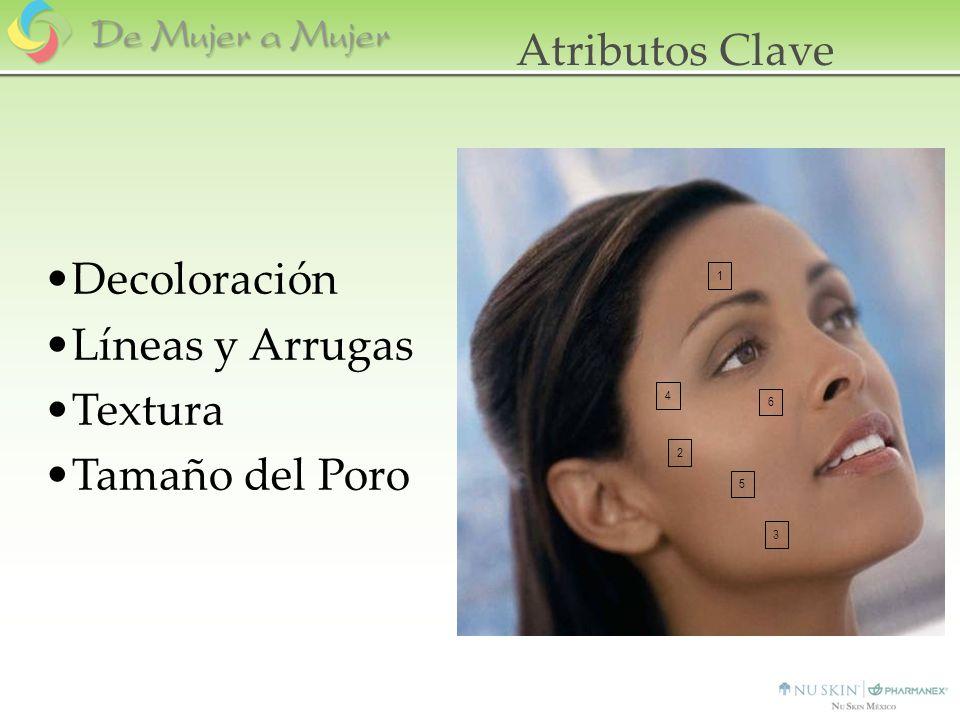 Atributos Clave Decoloración Líneas y Arrugas Textura Tamaño del Poro
