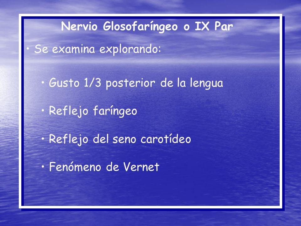 Nervio Glosofaríngeo o IX Par