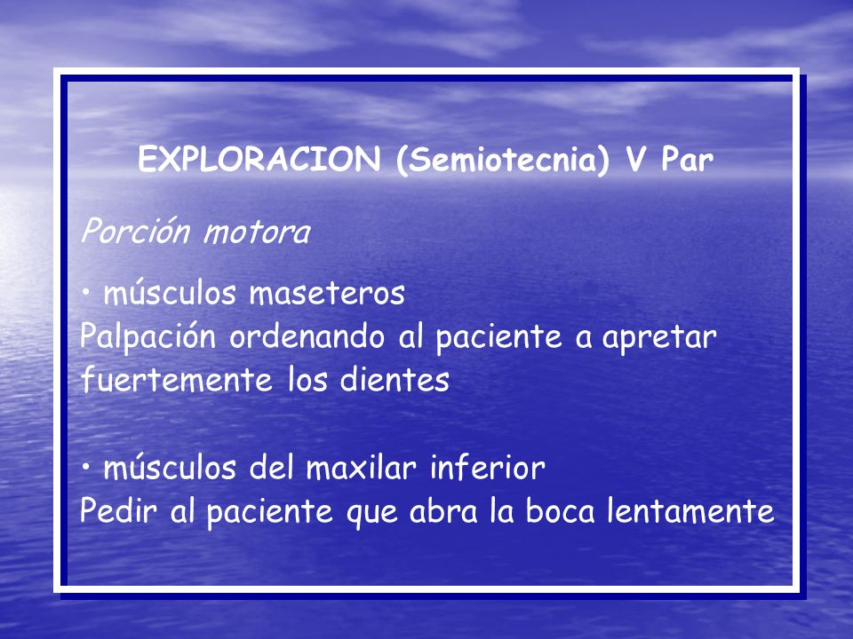 EXPLORACION (Semiotecnia) V Par