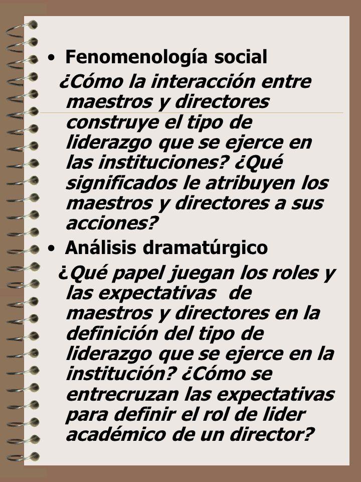 Fenomenología social