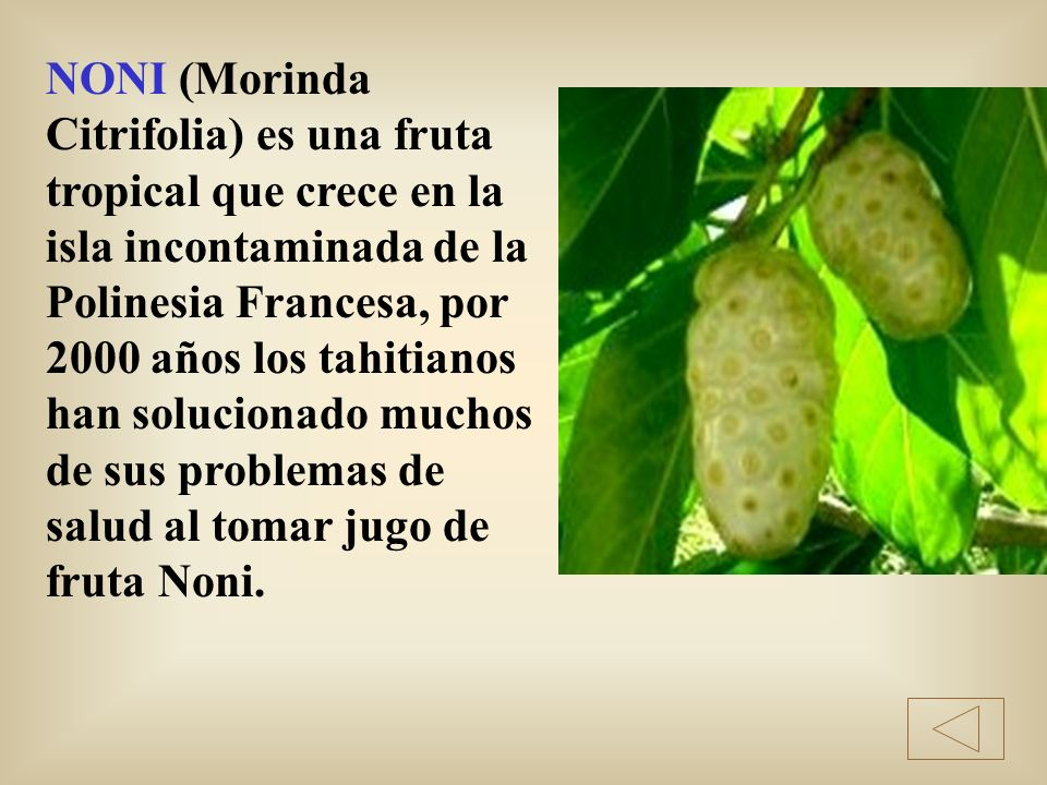 NONI (Morinda Citrifolia) es una fruta tropical que crece en la isla incontaminada de la Polinesia Francesa, por 2000 años los tahitianos han solucionado muchos de sus problemas de salud al tomar jugo de fruta Noni.