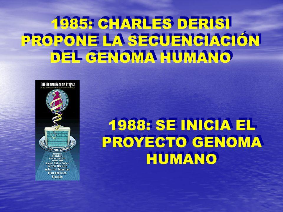 1985: CHARLES DERISI PROPONE LA SECUENCIACIÓN DEL GENOMA HUMANO