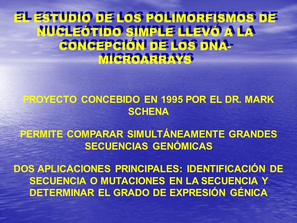 PERMITE COMPARAR SIMULTÁNEAMENTE GRANDES SECUENCIAS GENÓMICAS